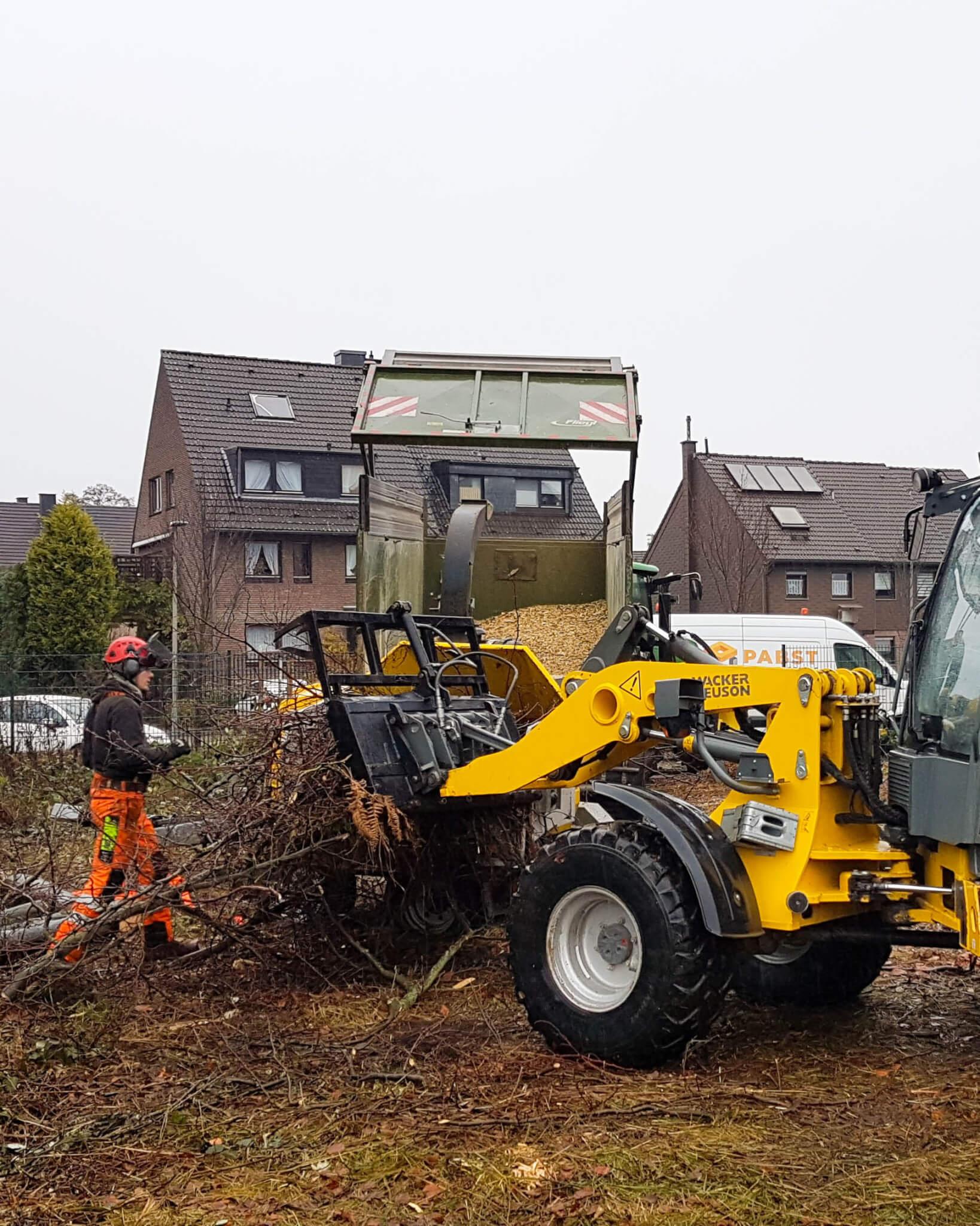 Abteilung Baumdienst: Schreddern nach Baumfällung