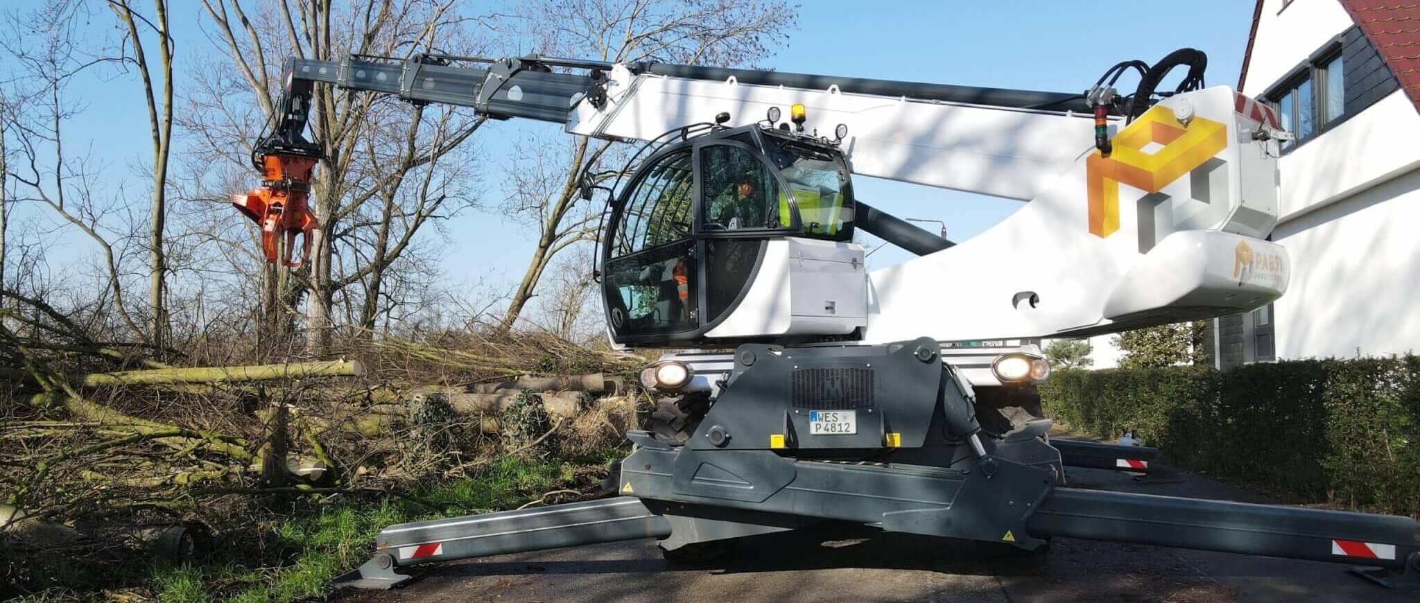 Baumdienst bei der Pabst Umweltservice GmbH