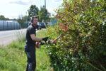 Heckenschnitt bei der Pabst Umweltservice GmbH