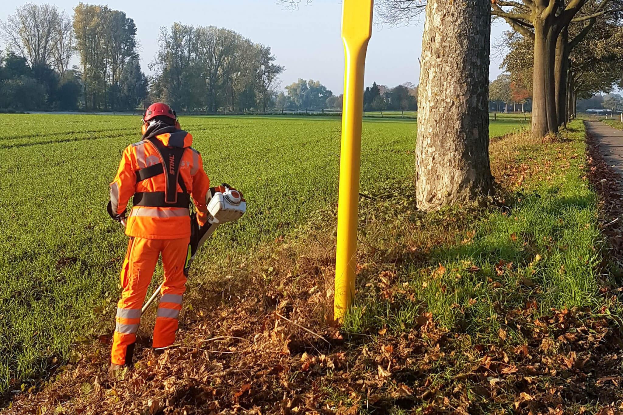 Landschaftspflege: Mäharbeiten mit dem Freischneider